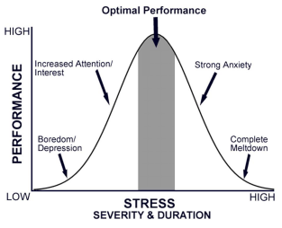 Yerkes Dodson Law How to manage FMGE Exam Stress?