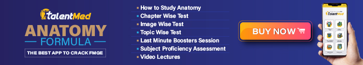 HOW TO CRACK FMGE 2 How to Prepare Anatomy for FMGE 2021? FMGE, FMGE preparation, FMGE Study Plan, FMGE Tips